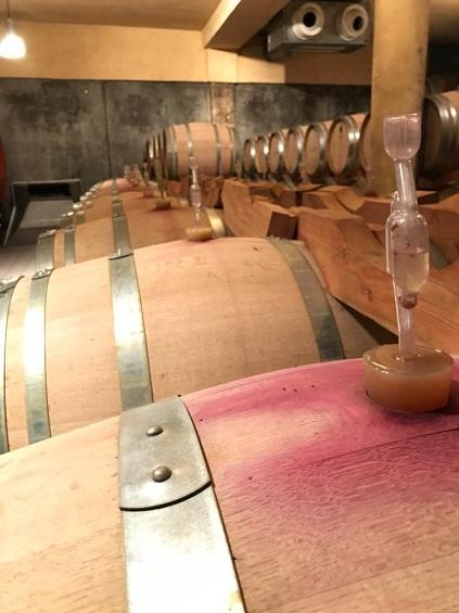Weinprobe1