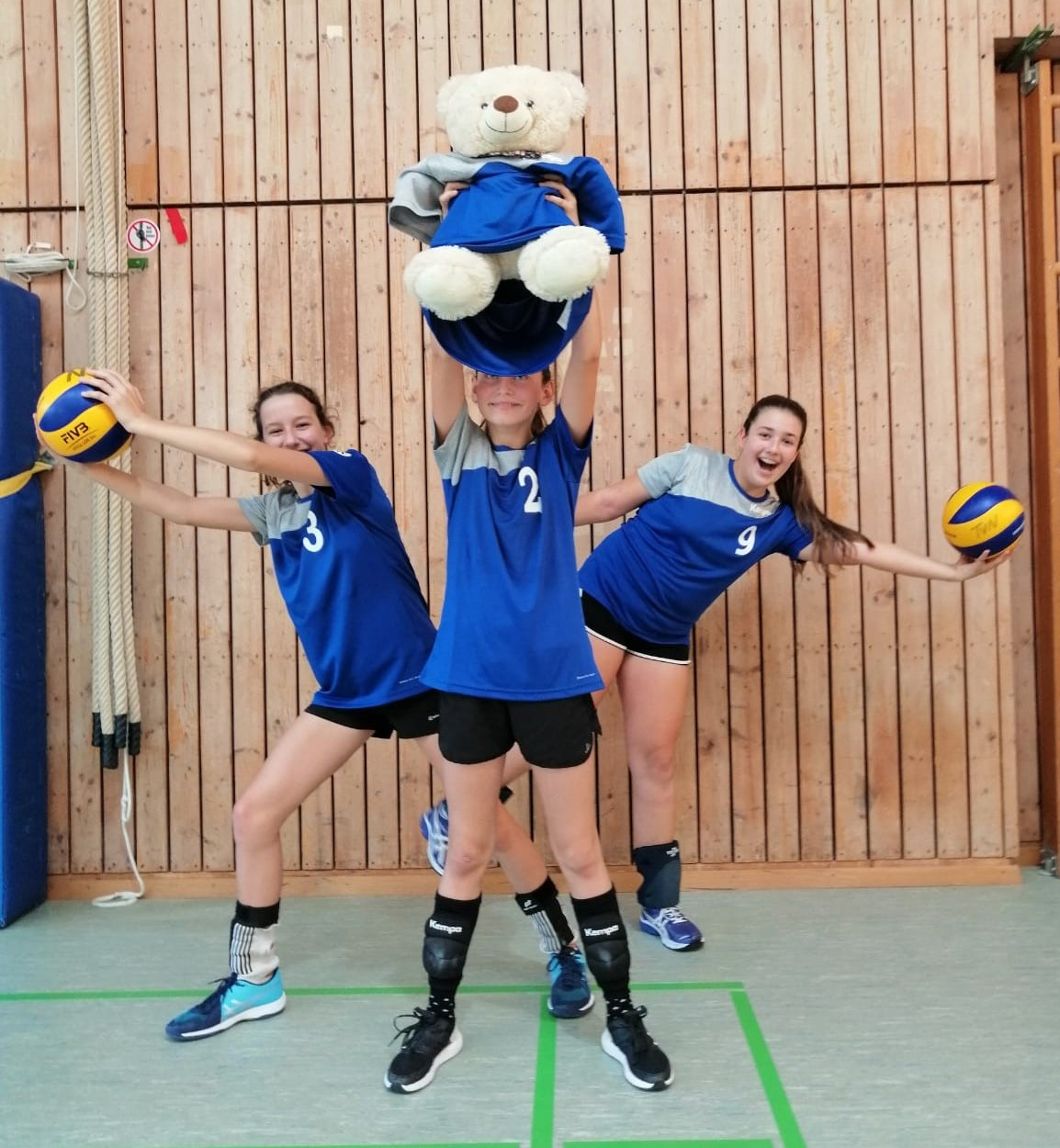 Volleyball-Minis